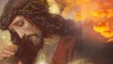 Photo of Cel ce împlineşte voia lui Dumnezeu e mulţumit de toate