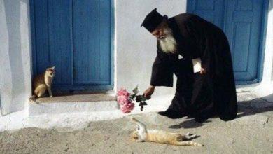 Photo of Iubirea nu cere mari isprăvi şi planuri mari