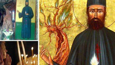 Photo of Citește mâine, 17 decembrie, Rugăciunea la Sfântul Prooroc Daniel pentru izbăvirea de boală și iertarea de păcate