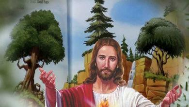 """Photo of """"Povestea celor trei copaci…"""" Este de mare încărcătură spirituală și ai ce învăța din ea"""