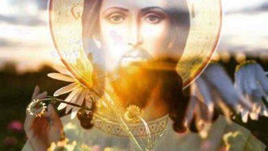 Photo of Îți va fi greu să păcătuiești dacă l-ai cunoscut pe Iisus