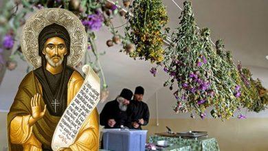 Photo of Rețetar duhovnicesc al Sfântului Efrem pentru 8 boli sufletești