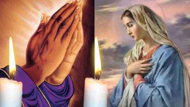 Photo of Rugăciune 24 februarie. Citește azi Rugăciunea către Preasfânta Născătoare de Dumnezeu pentru împlinirea miracolelor în viață